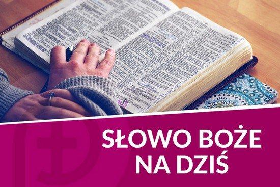 slowo_550