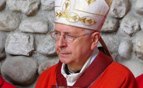 (Polski) Abp Gądecki: to jest niezwykła Niedziela Palm