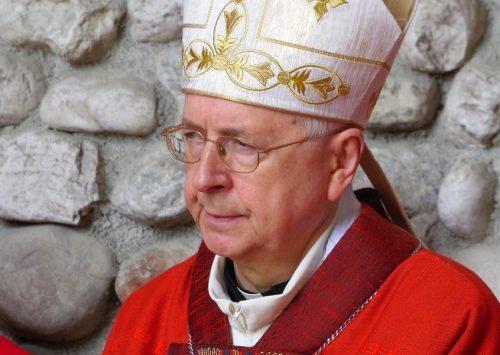 Abp Gądecki: to jest niezwykła Niedziela Palm