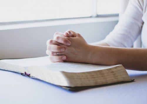 21 stycznia (wtorek), godz. 11.00: Konferencja prasowa przed Niedzielą Słowa Bożego
