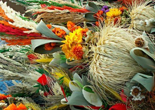 Rzecznik Episkopatu: Niedzielę Palmową możemy obchodzić także w domach